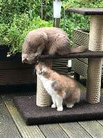 Evi & Olivia